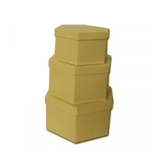 Scatola Cartone Esagonale Set 3 Pz  Mis.max cm  24.5 x 12.5