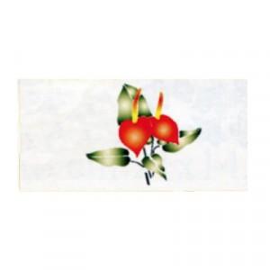 Stencil - cm 15x25